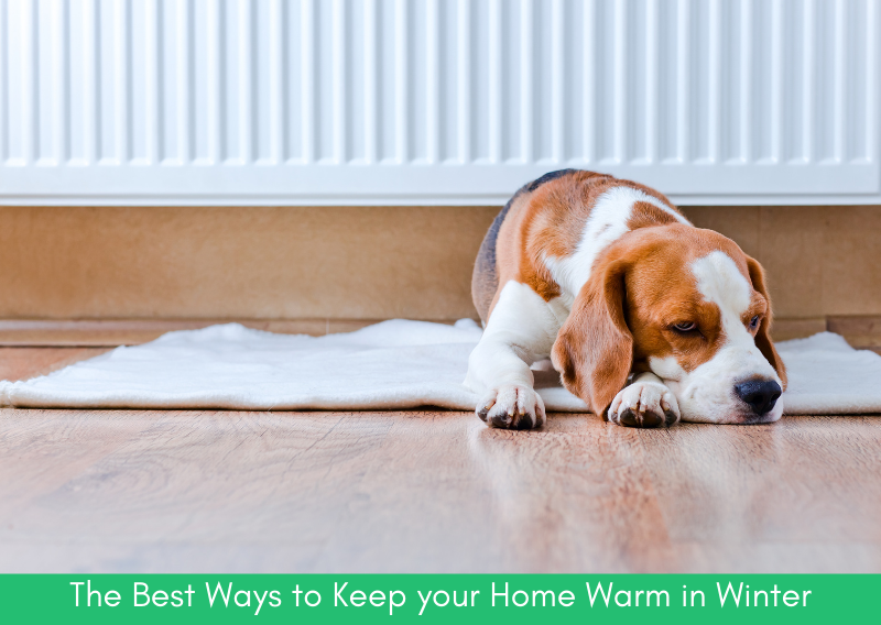 The Best Ways to Keep your Home Warm in the Winter